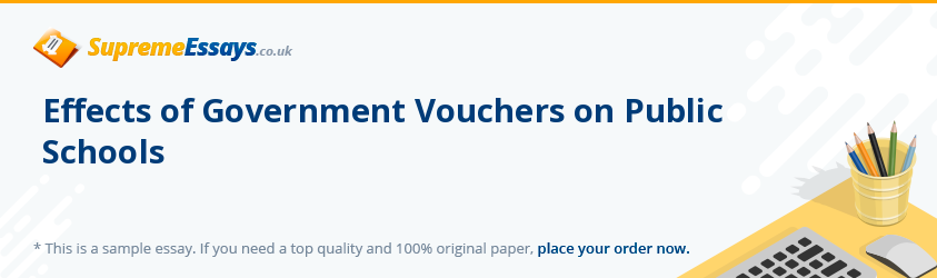 Effects of Government Vouchers on Public Schools